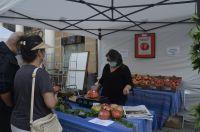 Mara_Victoria_Martnez_y_sus_tomates_ecolgicos_Ayuntamiento_de_Barbastro
