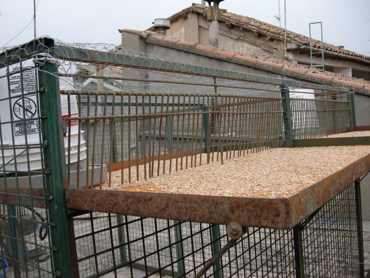 Campaña de control de palomas con la instalación de dos jaulas